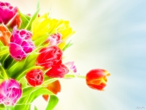 flowers, 3D, bouquet