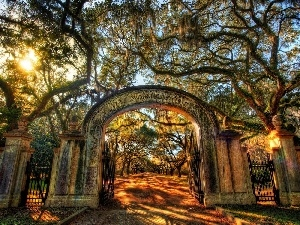 Gate, trees, viewes, Park, light breaking through sky, alley