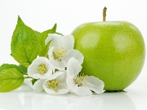 Apple, Flowers, green ones
