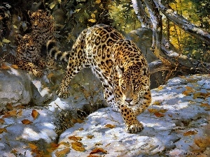 Art, snow, trees, Jaguar, viewes