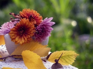 autumn, twig, small bunch, chrysanthemums