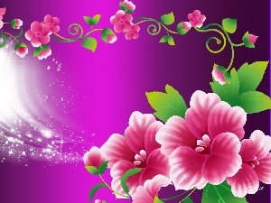 background, purple, Pink, graphics, Flowers