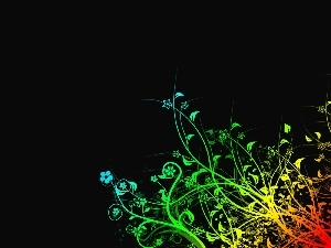 background, Black, rainbow, Flowers