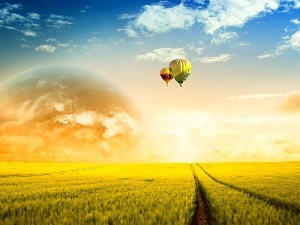 Balloons, field, west, sun
