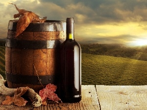 barrel, Wine, west, Leaf, sun