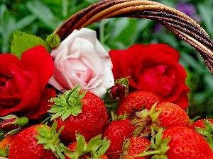 roses, basket, strawberries