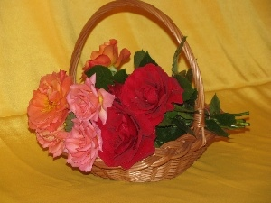 rouge, basket, bouquet