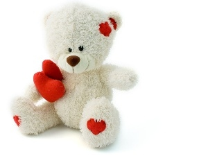 teddy bear, White, Valentine