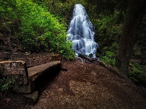 Bench, Path, forest, waterfall