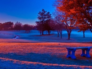 viewes, Bench, trees, winter, Great Sunsets, Park