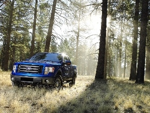 Ranger, blue, grass, forest, Ford, trees, viewes