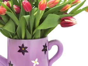 bouquet, Tulips, watering can