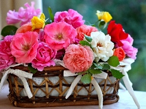 basket, bow, roses