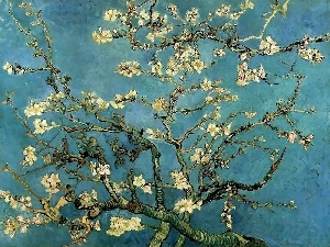 in, Branches, Vincent Van Gogh, Bloom, Almond