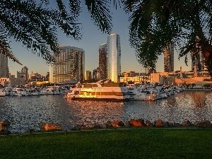 Yachts, California, port, San Diego, Palms, USA