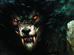 canines, Eyes, werewolf, Red