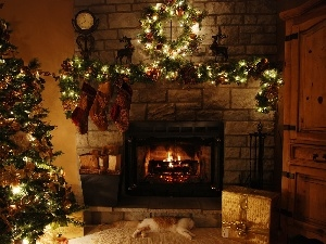 Lights, cat, gifts, christmas tree, socks, burner chimney