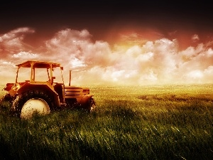 cereals, Lany, agrimotor, Field