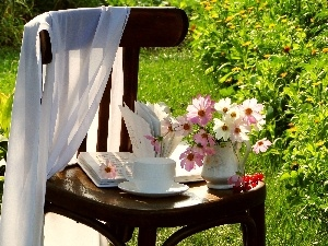 Chair, Book, Flowers, Garden, Cosmos
