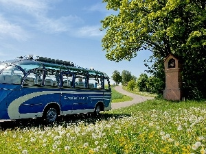 chapel, Meadow, bus, Way