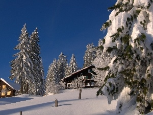 clean, Snowy, Conifers, winter, Sky, Houses