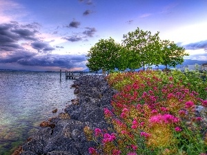 Flowers, clouds, sea