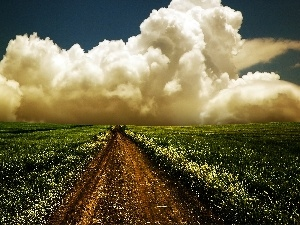 Path, clouds, Field