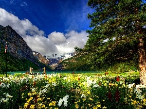 color, Park, Mountains, Flowers, lake