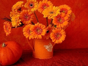 composition, pumpkin, bouquet, Gerbers