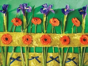 composition, Irises, Flowers, gerberas