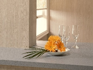 glasses, composition, gerberas