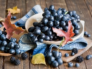 composition, Leaf, grape, blackberries