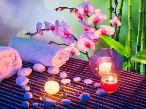 composition, Stones, orchids, Spa, Candles