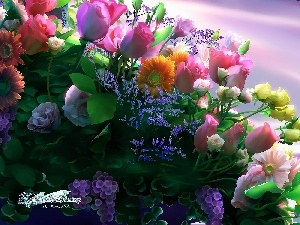 different, bouquet, graphics, flowers, Kagaya