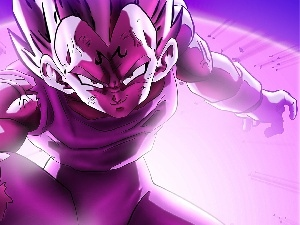 Vegeta, Dragon Ball