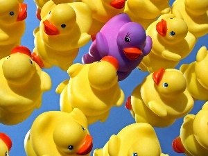 Rubber, ducks, toys