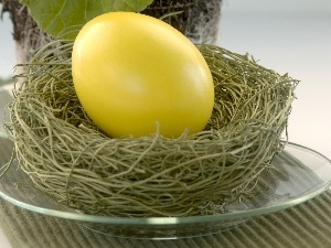 nest, Easter, egg