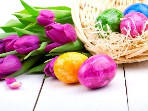 Tulips, eggs, Easter