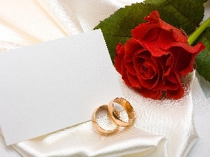 rings, envelope, rose