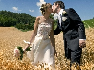Field, marriage, Steam, corn, young
