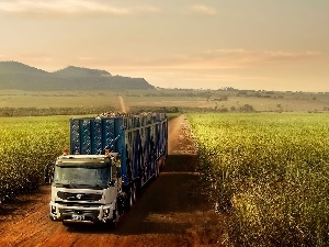 Field, Way, lorry, Volvo cars