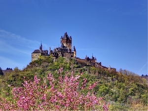 flourishing, Hill, Spring, Castle, trees, Reichsburg