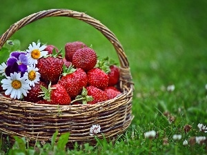 flowers, small bunch, basket, grass, strawberries