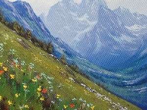 Meadow, Flowers, Mountains