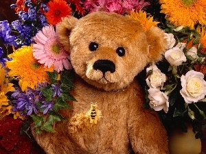 teddybear, Flowers, Plush