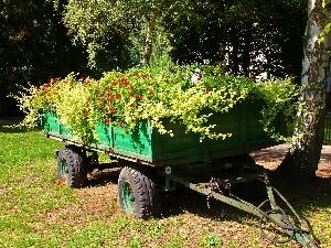 Trailer, Flowers, Old
