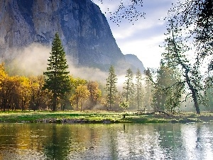 Fog, River, Mountains, morning, forest