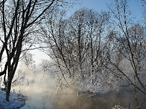 Fog, River, trees, winter, viewes