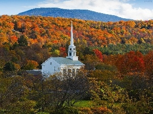 church, forest, autumn