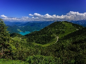 forest, lake, Bavarian Alps, panorama, Germany